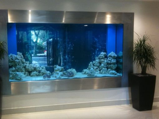 Large Hospital Reception Wall Aquarium [4]