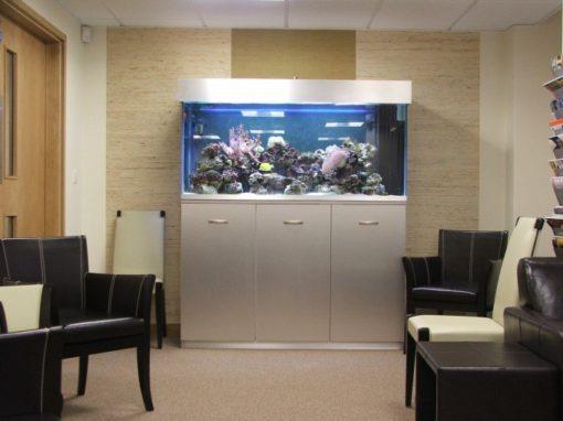 Bespoke Marine Aquarium [25]