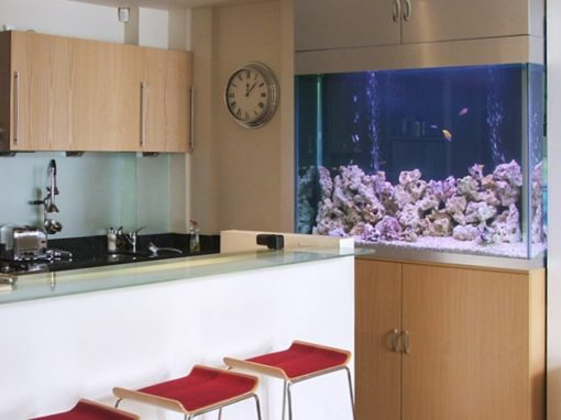 Designer Aquarium, Notting Hill [19]