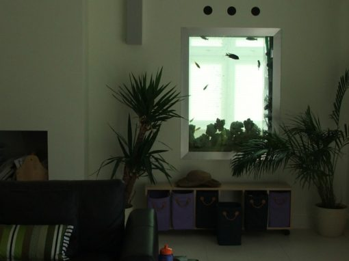 Doorway Aquarium [23]