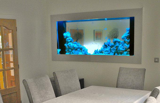 In Wall Aquarium Design & Installation   In Wall Fish Tank UK Specialist