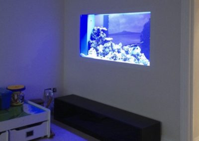 Saltwater In Wall Aquarium [14]