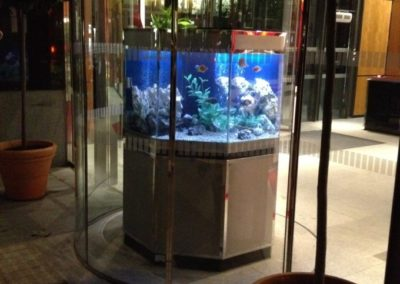 Octagon Aquarium in Stainless Steel [8]
