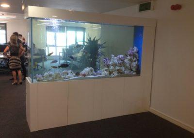 Office Divider Aquarium [31]