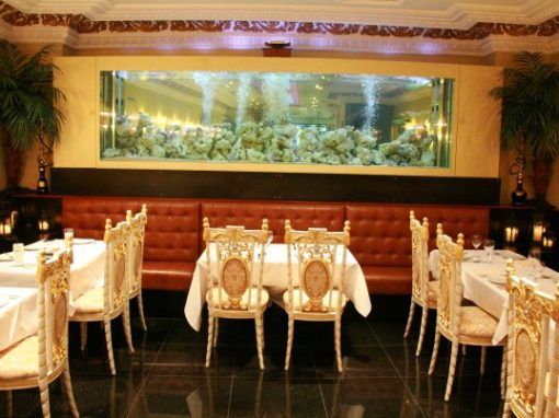 Large Restaurant Aquarium [21]