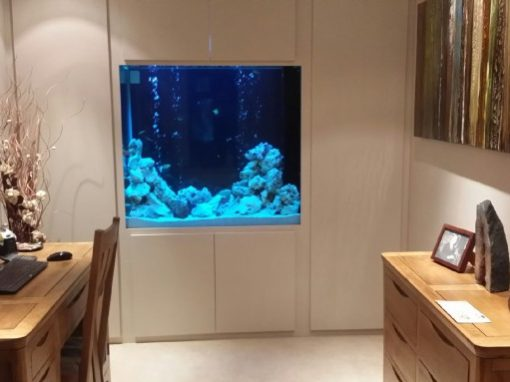 Home Office Through Wall Aquarium [32]