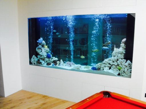 Basement Games Room Aquarium [5]