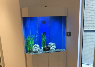Five Sided Corner Aquarium, London (46)