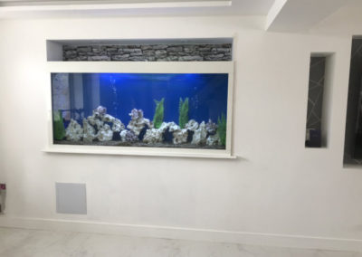 In Wall Aquarium Berkshire (47)